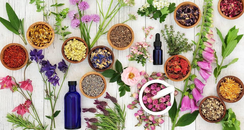 Floriterapia per la cura dell'ansia – Fiori di Bach